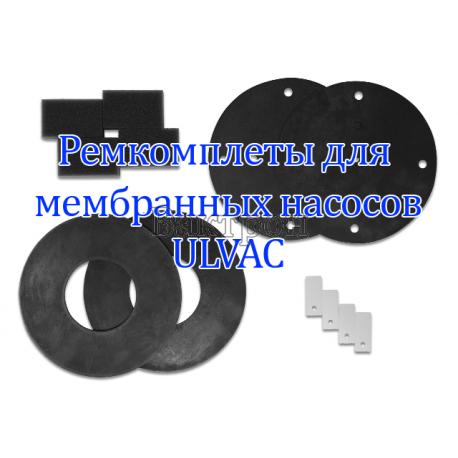 Ремкомплект для ULVAC A48202200000 Rebuid Kit for DAP-6D,12S